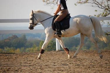 Plucky pony at work by Ravz689