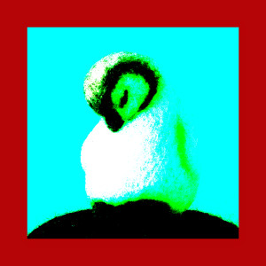 BethMiniWorld's Profile Picture