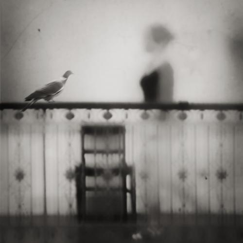 Blurred realities by G-Moel