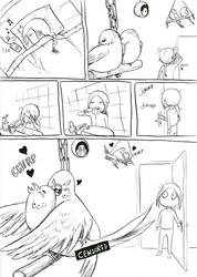 My budgies' morning routine