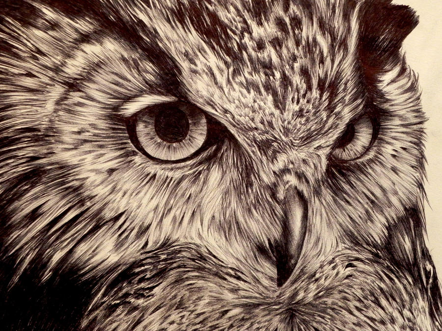 Night Hunter by hieronymus83
