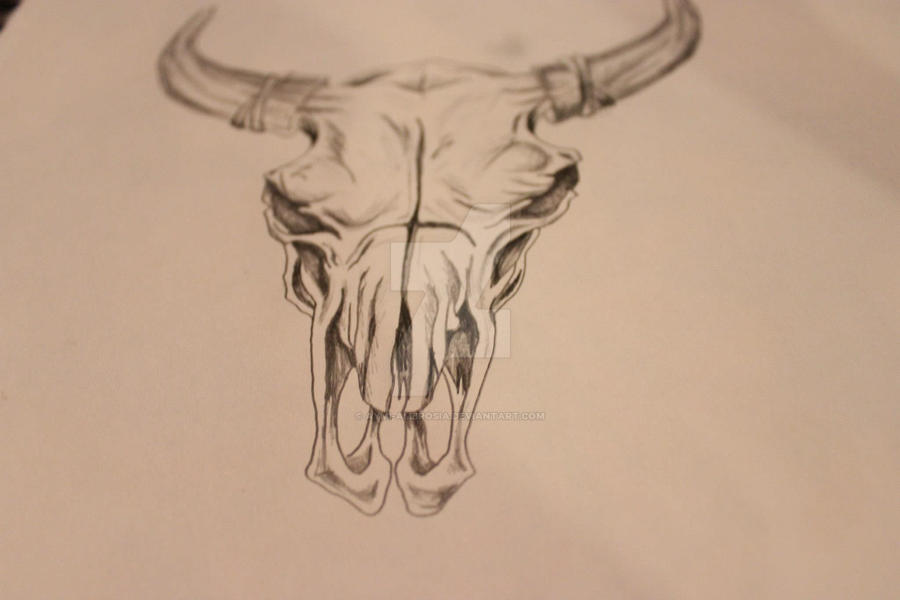 bull skull sketch outline by aymiambrosia on deviantart