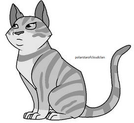 Warriors shorthair Kit Tabby lineart by Polarstarofcloudclan