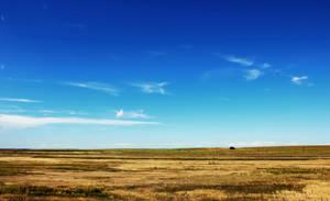 Prairie by Joe-Lynn-Design