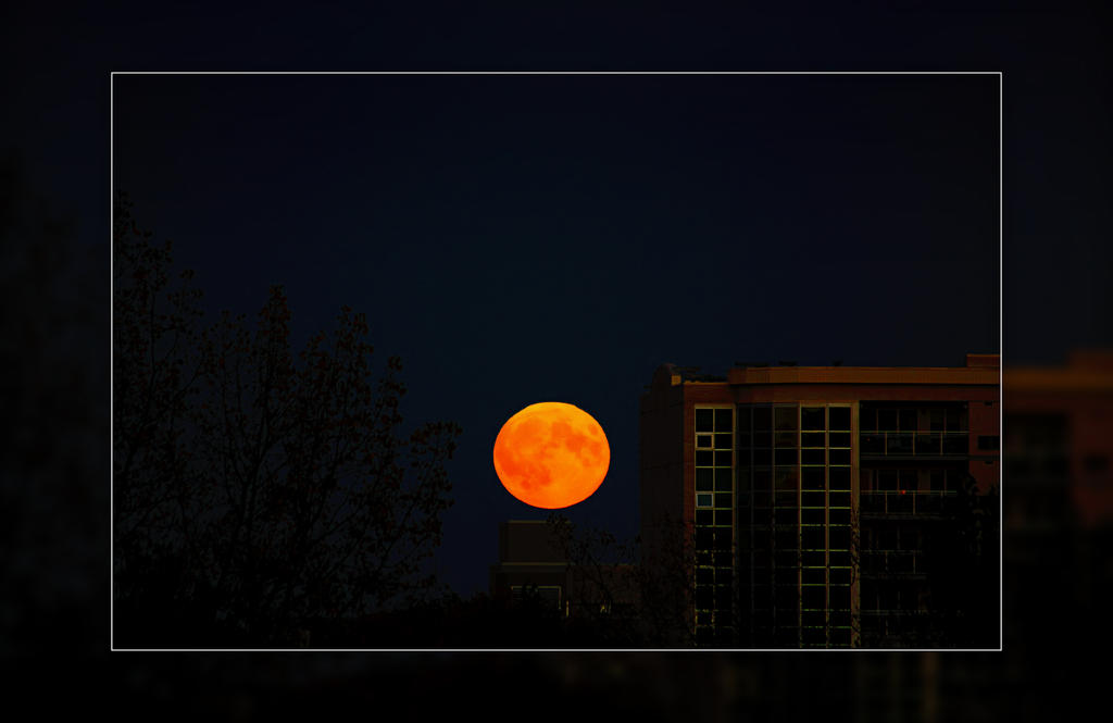 Blood Moon Rising by Joe-Lynn-Design