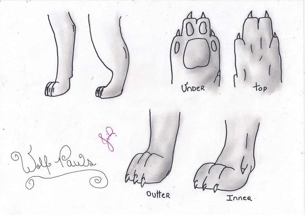 Wolf Paws by FinnyBritish