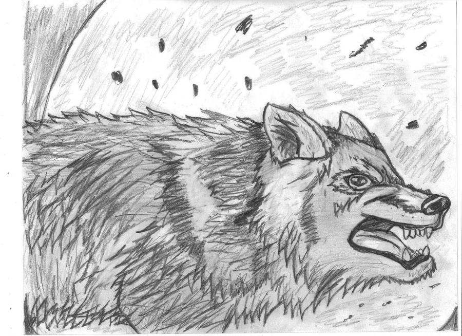 mad wolf drawings - photo #1