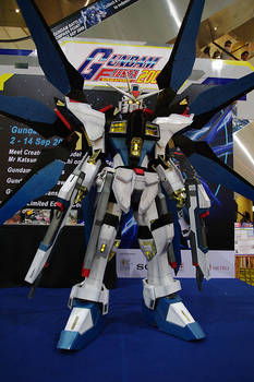 Strike Freedom Gundam - 5 of 5
