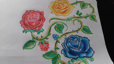 Roses of Base Color