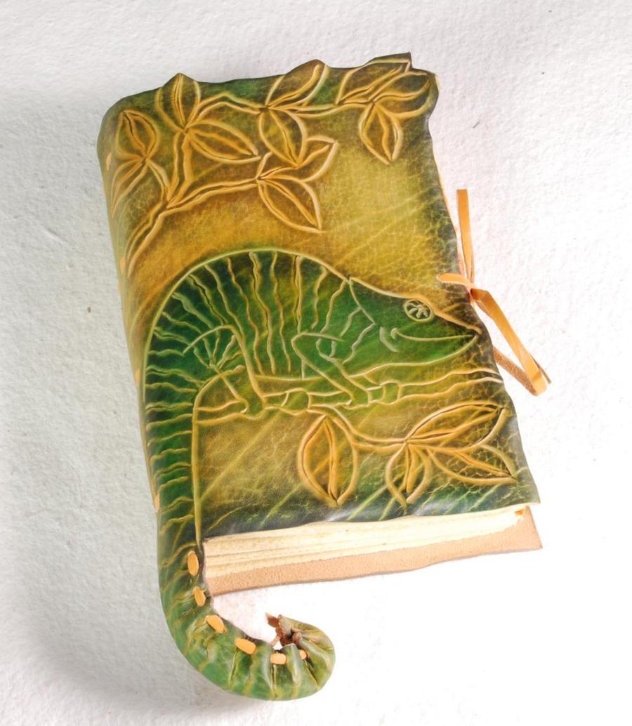 Chameleon Notebook by gildbookbinders