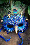 'The Peacock Mask'