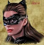 The-dark-knight-rises-selina-kyle-catwoman-finishe