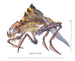 Rippler Bug: SST