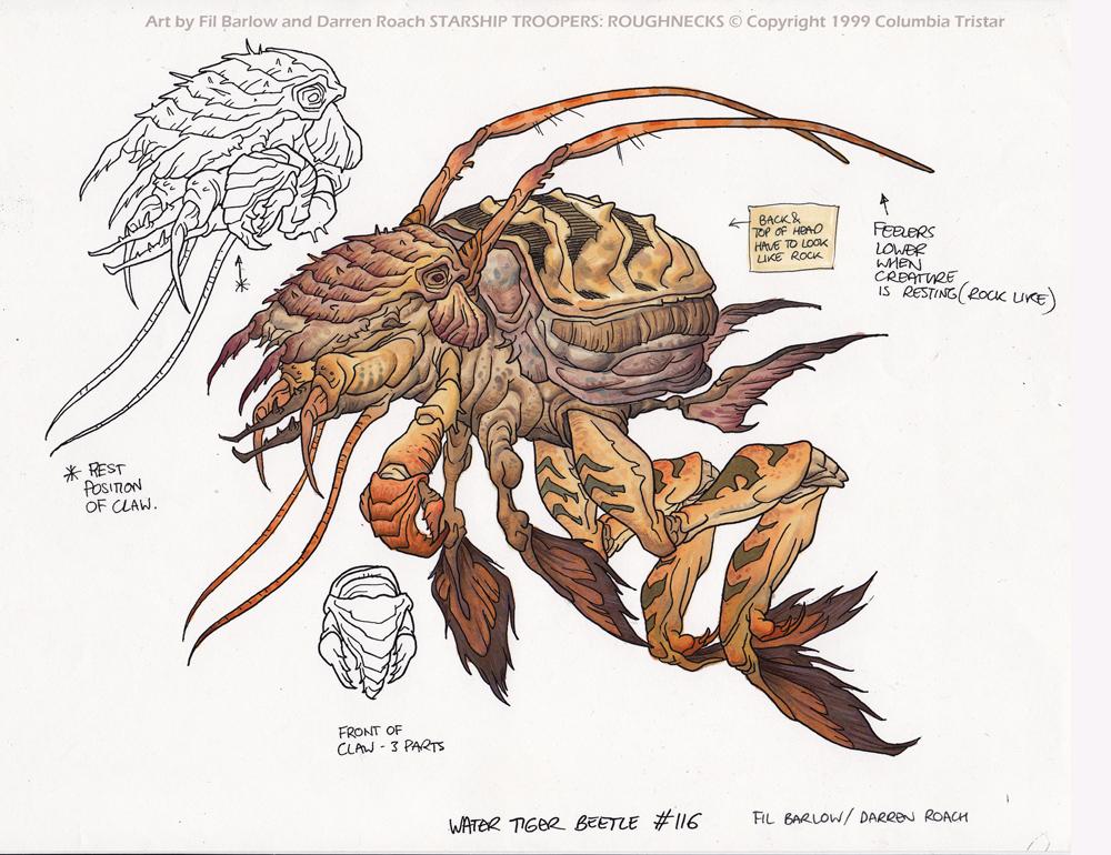 Water Tiger Beetle: SST by filbarlow