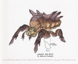 Chariot Bug: SST