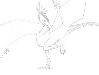 Xey dancu sketch by PrismatDragoon