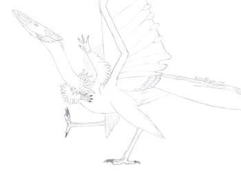 Rabia dancu sketch by PrismatDragoon