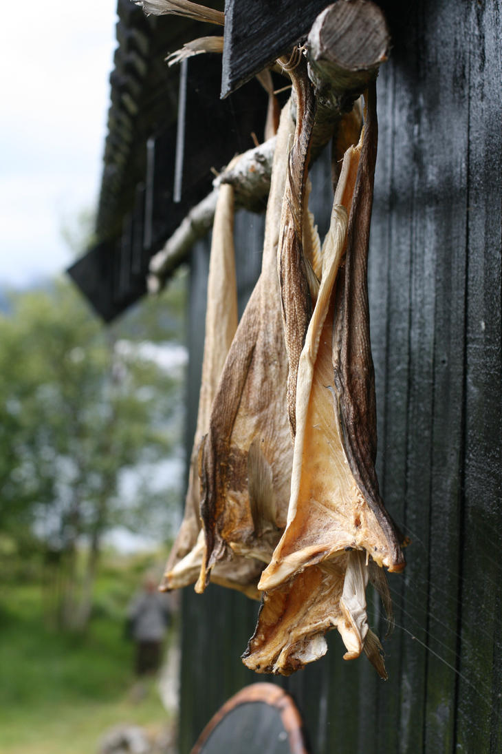 Dried fish by Spring-Blossom