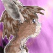 Little Bunny Bonbon