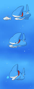 vress is shark