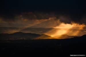 Power of Light by tiagojsilva