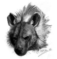 Brown Hyena Greyscale by RogueLiger