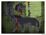 Wolfie-Reference sheet