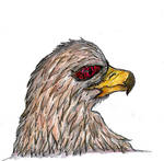 [Animal] Bird Head by GilgaPhoenixIgnis