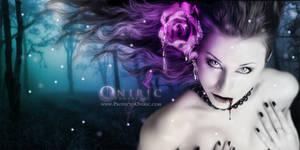 Violet Roses by ProyectoOniric