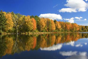 St. Albans Reservoir Foliage