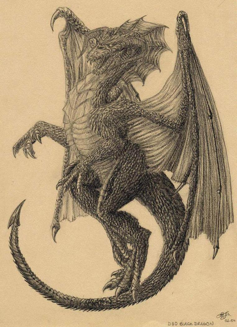 Black Dragon by Shaliara