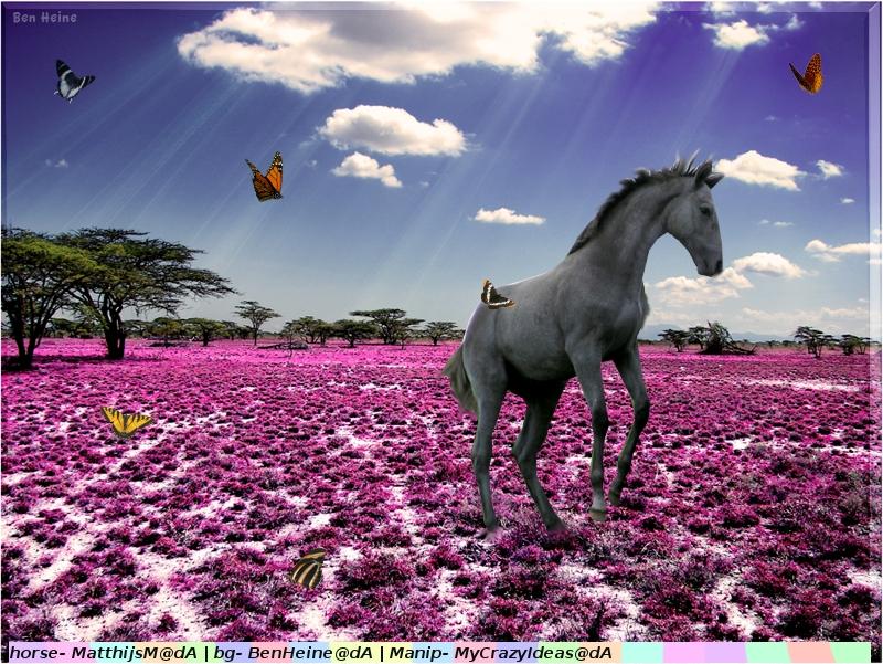 Butterfly Horse by MyCrazyIdeas