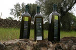 sciaraviva : bottles