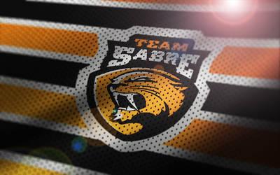 Team Sabre Logo