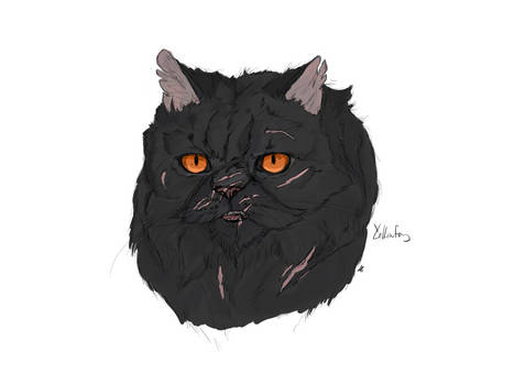Yellowfang coloured