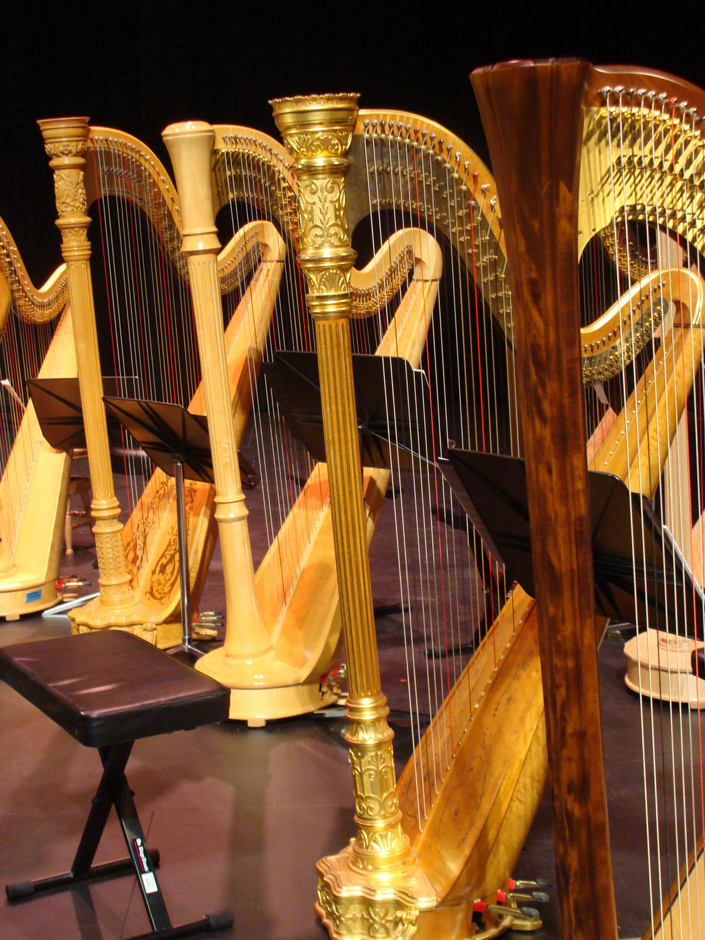 A Forest of Harps: ladies in waiting by JWA2277