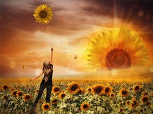 The world sunflowers