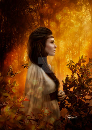 Princess of the woods by tryskell