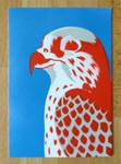 Postcard Hawk 1