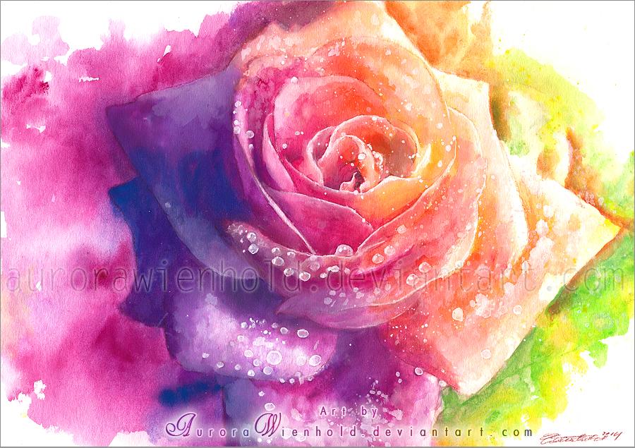 Rainbow rose by AuroraWienhold