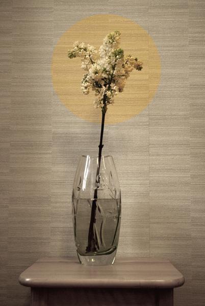 Flower by Tania-Perova