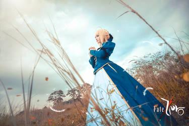 Fate/Zero - Saber by wkwebsite