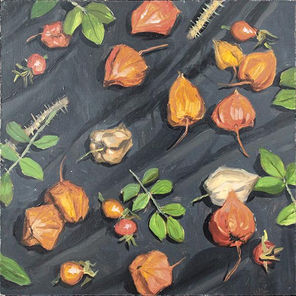 Background. Ground-cherry and dog-rose fruit by AlexeyRudikov
