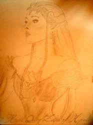 Princess Zelda by martinquinta