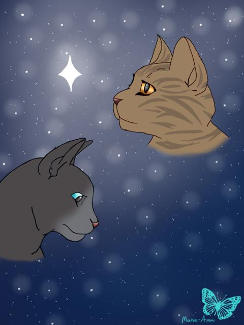 bluestaroakheartwarrior cats by magy114 on deviantart