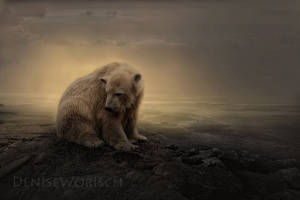 Bear by DeniseWorisch
