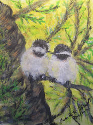 Chickadee Lovebirds