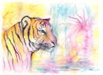 Color practice-Tiger II