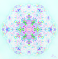 Subtle Mandala