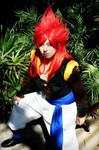 Super Saiyan 4 Gogeta cosplay